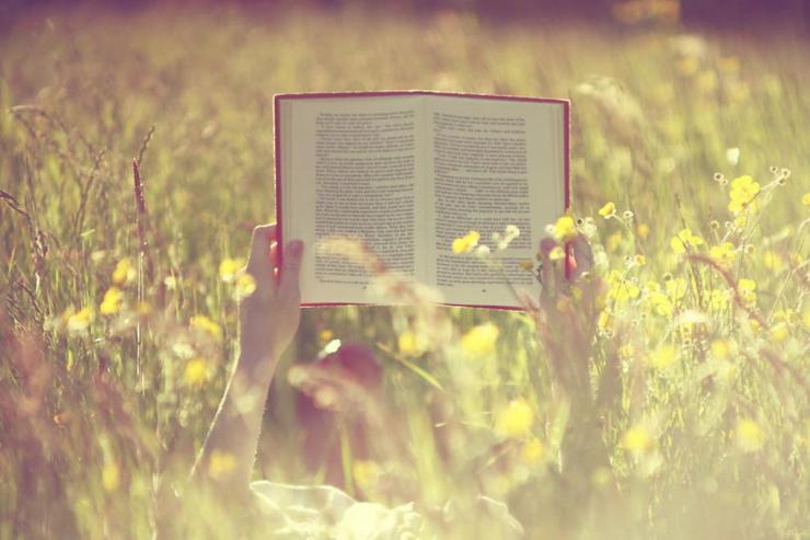 01-reading-a-book